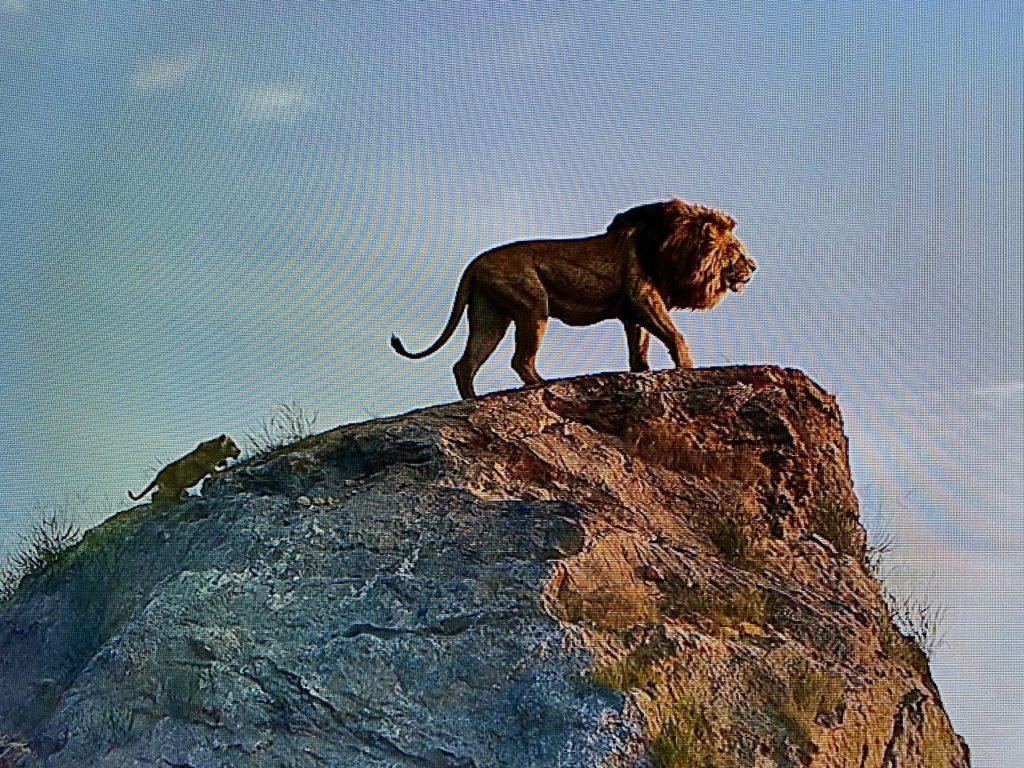 ライオンキング4
