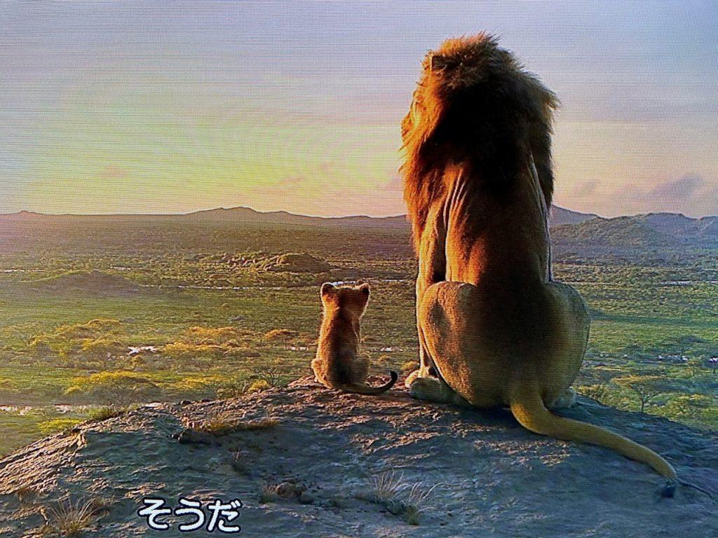 ライオンキング5